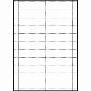 Blank Perforated Tickets 90 x 25mm White